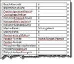 Word – Index mitAutoMarkierung